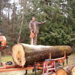A TOO big log