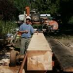 Log squared