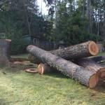 log prep 1